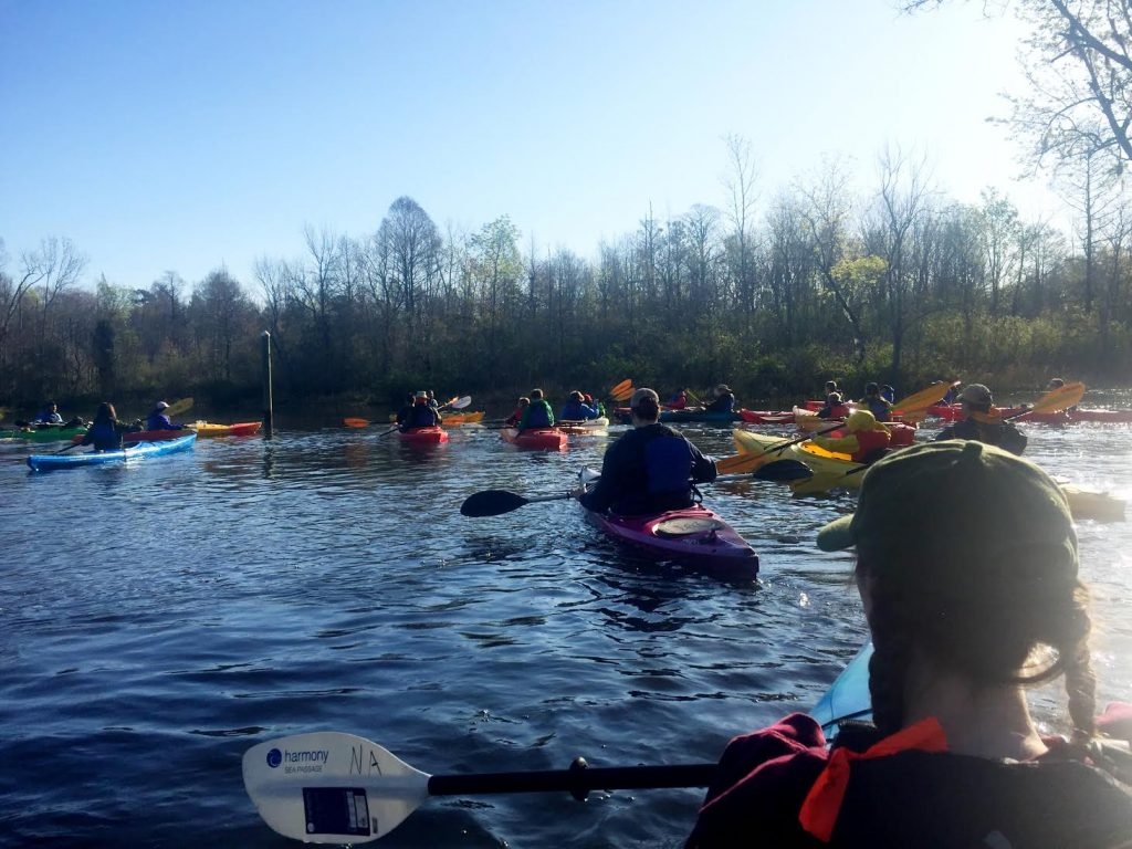 An armada of classical Christian homeschool students float through a freshwater marsh in kayaks
