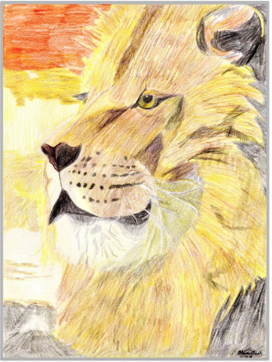 Online Christian homeschool student's hand-drawn artwork featuring a lion